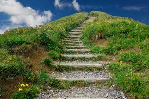 Karriär trappan